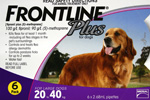 Frontline Plus Flea and Tick Control
